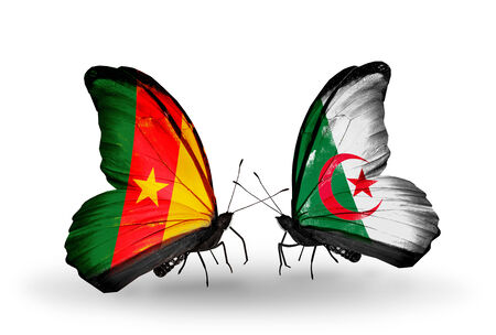 Two butterflies with flags on wings as symbol of relations Cameroon and Algeria photo