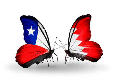 bahrain money: Two butterflies with flags on wings as symbol of relations Chile and Bahrain