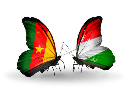 Two butterflies with flags on wings as symbol of relations Cameroon and Hungary photo
