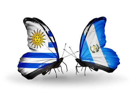 Two butterflies with flags on wings as symbol of relations Uruguay and Guatemala photo