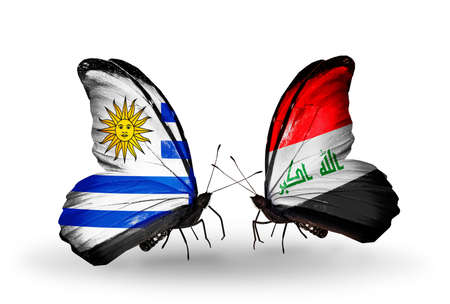 iraq money: Two butterflies with flags on wings as symbol of relations Uruguay and  Iraq Stock Photo