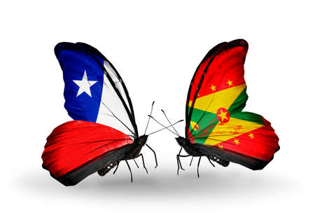 Two butterflies with flags on wings as symbol of relations Chile and Grenada photo