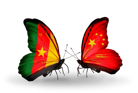 Two butterflies with flags on wings as symbol of relations Cameroon and China photo
