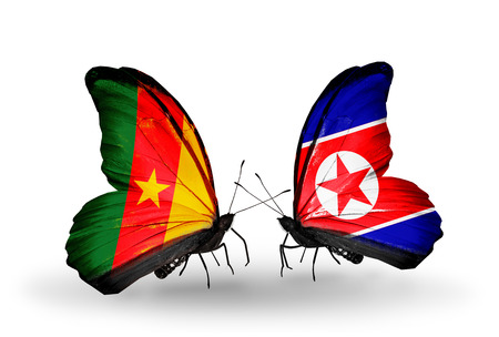 Two butterflies with flags on wings as symbol of relations Cameroon and North Korea photo