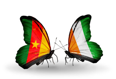 Two butterflies with flags on wings as symbol of relations Cameroon and Cote Divoire photo