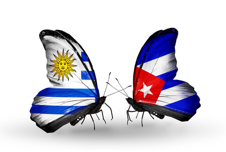 Two butterflies with flags on wings as symbol of relations Uruguay and Cuba Stock Photo