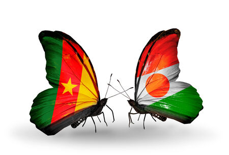 Two butterflies with flags on wings as symbol of relations Cameroon and Niger photo