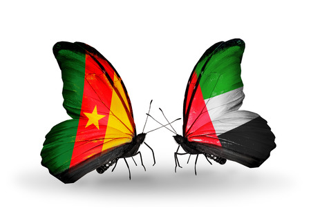 Two butterflies with flags on wings as symbol of relations Cameroon and United Arab Emirates photo