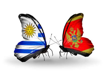 Two butterflies with flags on wings as symbol of relations Uruguay and Montenegro photo