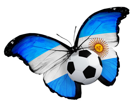penalty flag: Concept - butterfly with  flag flying near the ball, like football team playing