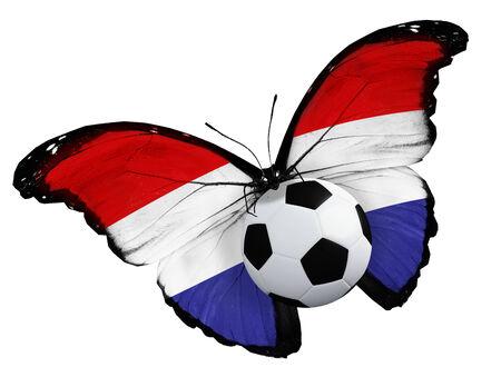 drapeau hollande: Concept - papillon avec le drapeau Hollande volant pr�s de la balle, comme le football �quipe jeu