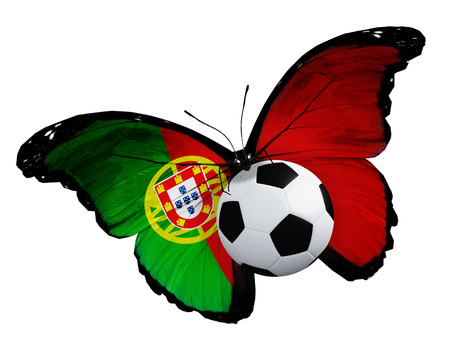 Concept - butterfly with Portugal flag flying near the ball, like football team playing photo