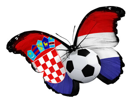 ball like: Concept - butterfly with Croatian flag flying near the ball, like football team playing