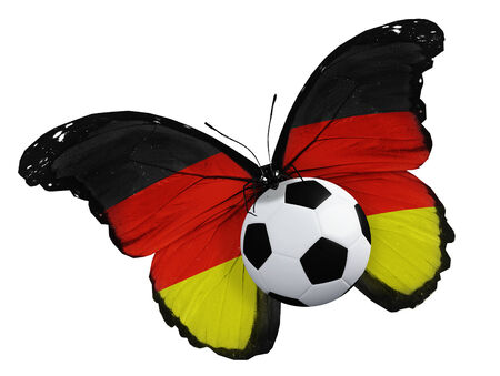 Concept - butterfly with Germany flag flying near the ball, like football team playing photo