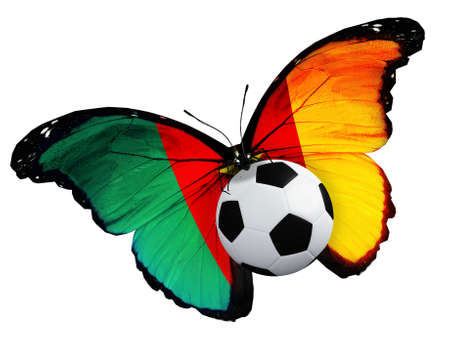 penalty flag: Concept - butterfly with Cameroon flag flying near the ball, like football team playing Stock Photo