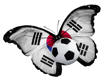 ball like: Concept - butterfly with Korean flag flying near the ball, like football team playing