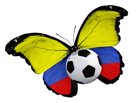 penalty flag: Concept - butterfly with Albanian flag flying near the ball, like football team playing