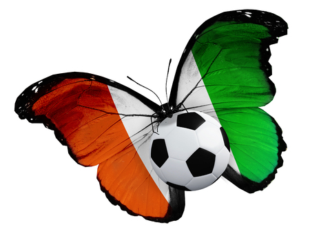 ball like: Concept - butterfly with Cote Divoire flag flying near the ball, like football team playing