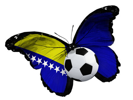 ball like: Concept - butterfly with Bosnian flag flying near the ball, like football team playing Stock Photo