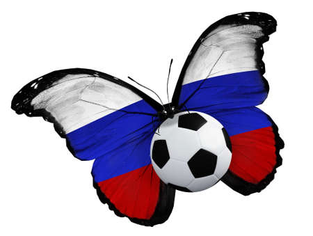 ball like: Concept - butterfly with Russian flag flying near the ball, like football team playing