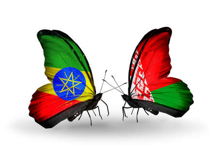 Two butterflies with flags on wings as symbol of relations Ethiopia and Belarus photo