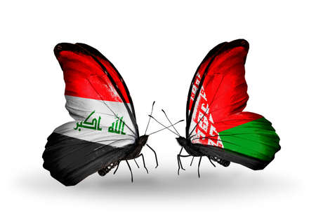 iraq money: Two butterflies with flags on wings as symbol of relations Iraq and  Belarus