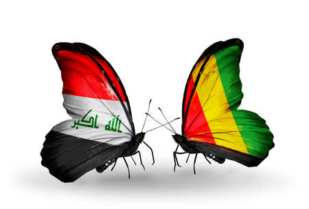 iraq money: Two butterflies with flags on wings as symbol of relations Iraq and  Guinea Stock Photo