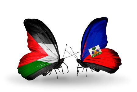 Two butterflies with flags on wings as symbol of relations Palestine and  Haiti photo