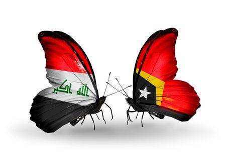 iraq money: Two butterflies with flags on wings as symbol of relations Iraq and  East Timor
