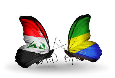 iraq money: Two butterflies with flags on wings as symbol of relations Iraq and  Gabon