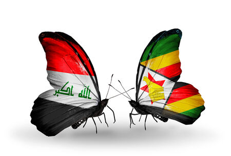 iraq money: Two butterflies with flags on wings as symbol of relations Iraq and Zimbabwe