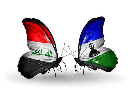 iraq money: Two butterflies with flags on wings as symbol of relations Iraq and Lesotho Stock Photo