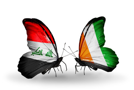 iraq money: Two butterflies with flags on wings as symbol of relations Iraq and Cote Divoire
