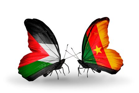 Two butterflies with flags on wings as symbol of relations Palestine and Cameroon photo
