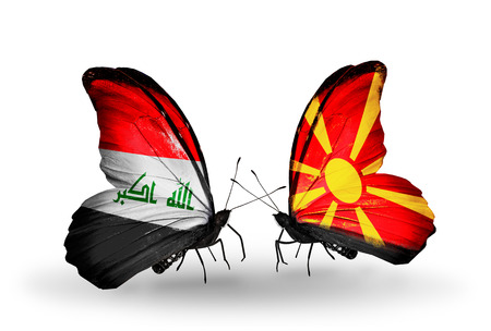 iraq money: Two butterflies with flags on wings as symbol of relations Iraq and Macedonia