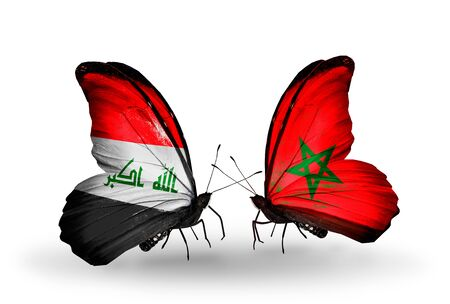 iraq money: Two butterflies with flags on wings as symbol of relations Iraq and Morocco