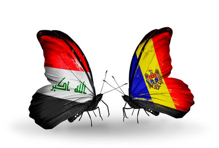 iraq money: Two butterflies with flags on wings as symbol of relations Iraq and Moldova