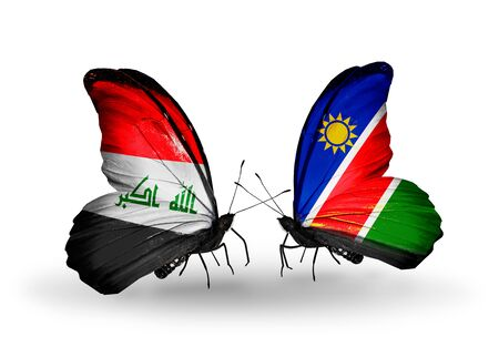 iraq money: Two butterflies with flags on wings as symbol of relations Iraq and Namibia