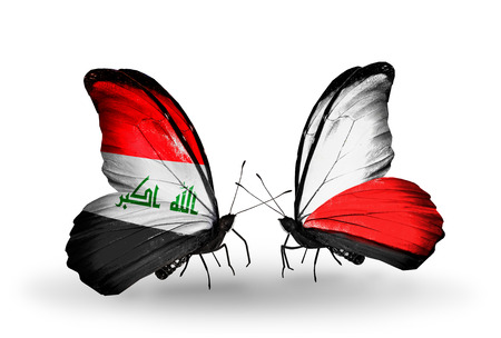iraq money: Two butterflies with flags on wings as symbol of relations Iraq and Poland Stock Photo