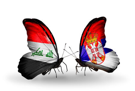iraq money: Two butterflies with flags on wings as symbol of relations Iraq and Serbia