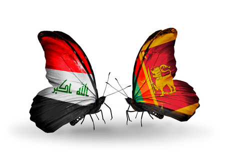 iraq money: Two butterflies with flags on wings as symbol of relations Iraq and Sri Lanka