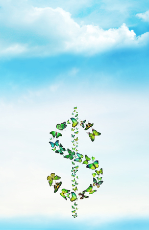 Sign of dollar with butterflies on sky background photo
