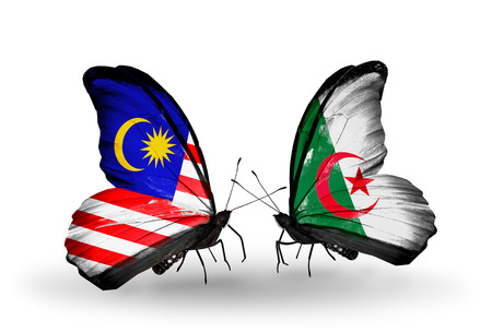 Two butterflies with flags on wings as symbol of relations Malaysia and Algeria photo