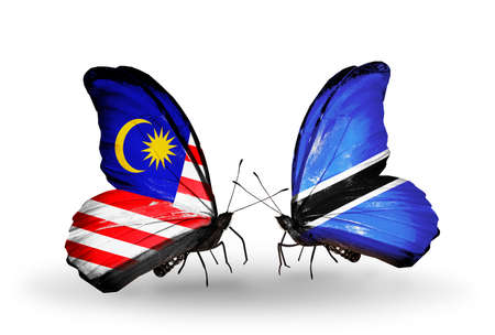 Two butterflies with flags on wings as symbol of relations Malaysia and Botswana photo