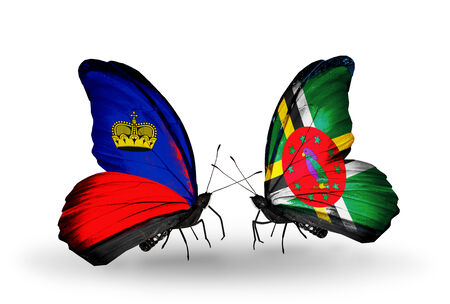 Two butterflies with flags on wings as symbol of relations Liechtenstein and Dominica photo