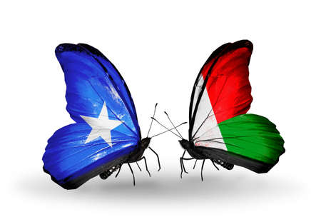 Two butterflies with flags on wings as symbol of relations Somalia and Madagascar photo