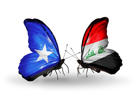 iraq money: Two butterflies with flags on wings as symbol of relations Somalia and Iraq Stock Photo