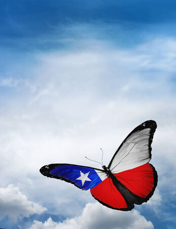Chili vlag vlinder vliegen op de hemel achtergrond