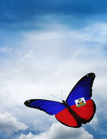 Haiti flag butterfly flying on sky background photo