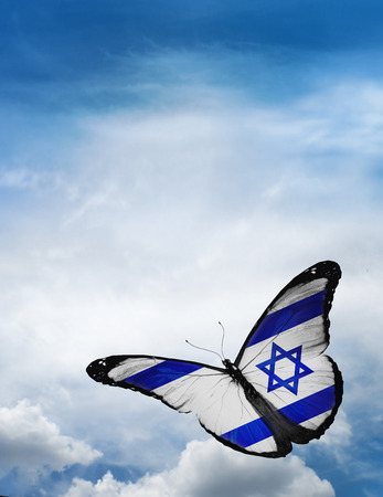 Israel flag butterfly flying on sky background photo
